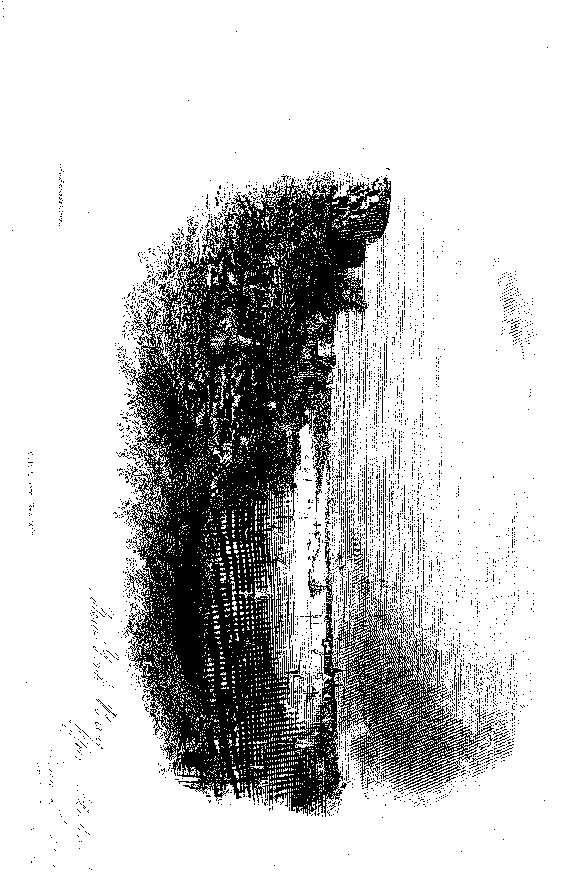 [ocr errors][ocr errors][merged small][ocr errors][merged small][merged small][merged small][ocr errors]
