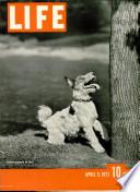 5 avr. 1937